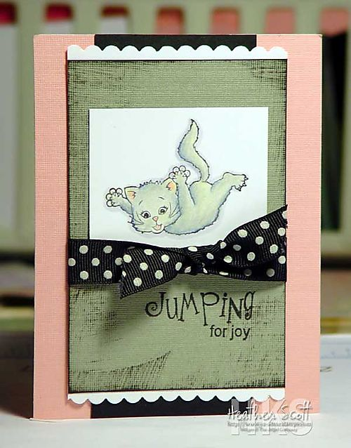 Jumpung-kitty