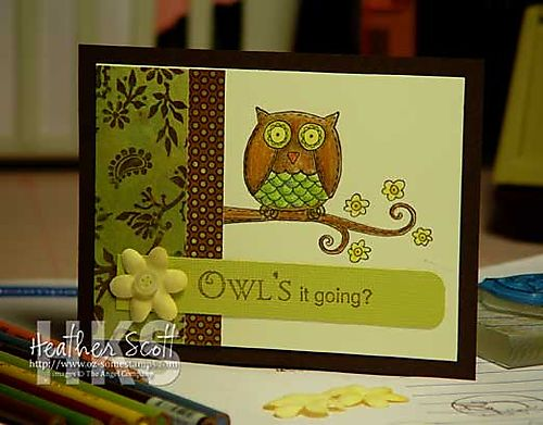 Owls-it-going