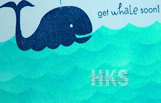 Whale-detail