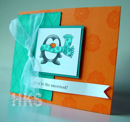 Penguin-angled