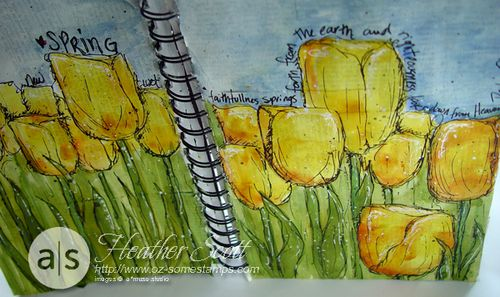 Tulips2012-3
