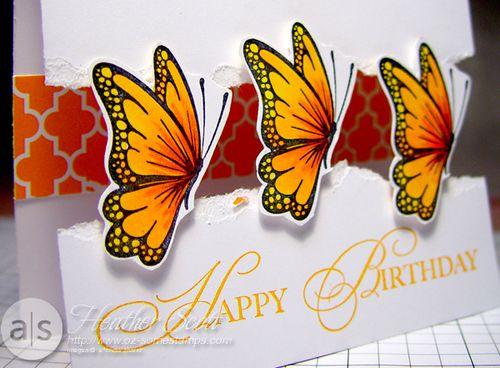 Papillon1-detail
