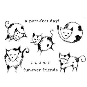 Furever_friends_1